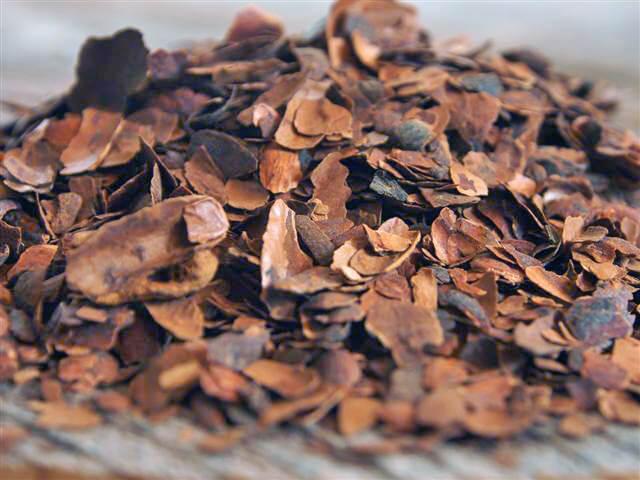 Kakaoschalen räuchern