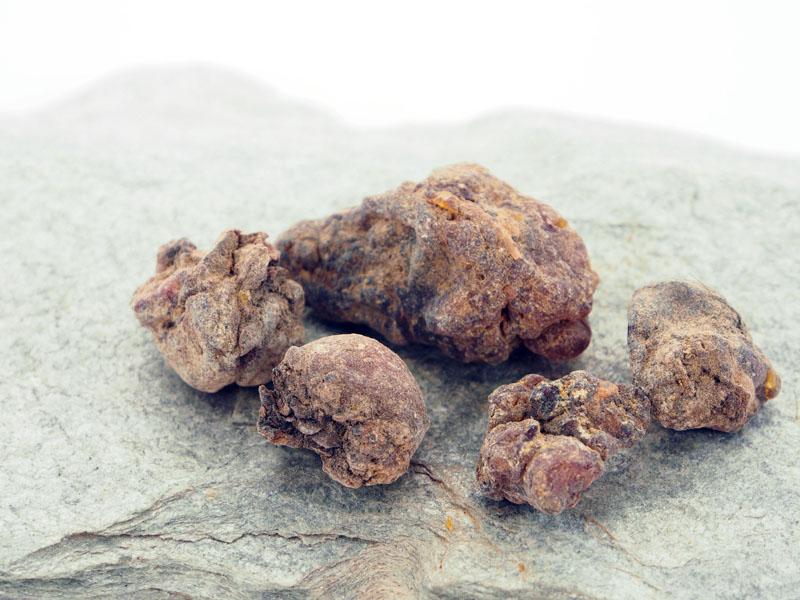 Tannenharz räuchern Labdanum Räuchermanufaktur